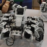 Любители робототехники в Омске получат дополнительные баллы к ЕГЭ