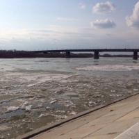 Первые весенние явления появились на реках Омской области