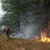 28 человек оштрафовали за пожары в Омской области