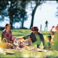 На следующих выходных омичам устроят пикник на берегу озера