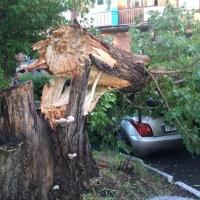 Омские автомобилисты пострадали от бури