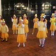 В Омске выберут лучшего исполнителя танца маленьких утят