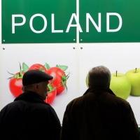 Омские пограничники запретили ввоз более 60 тонн польской продукции