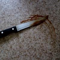 Мужчину с ножевыми ранениями обнаружили в Омске