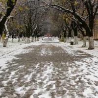 В Омске на ноябрьские праздники синоптики пообещали оттепель