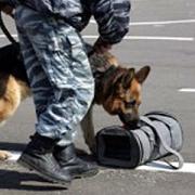 В Омске сотрудники ФСБ арестовали наркодилера с 5 килограммами героина
