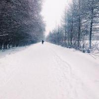 В Омске ожидается морозная неделя