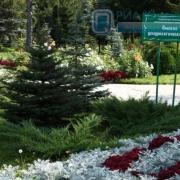 Омский городской дендропарк стал областным