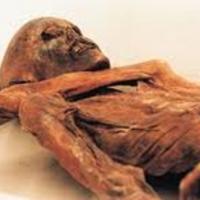 Во время уборки в подвале омичи нашли мумию