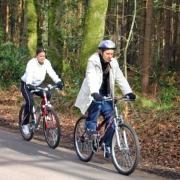 Велосипедистам осветят путь