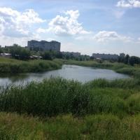 Омичей приглашают поучаствовать в субботнике на озере