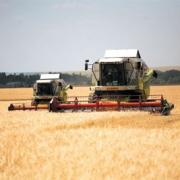 На развитие растениеводства в Омской области направят более 160 млн рублей