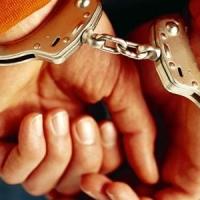 Полицейские задержали подозреваемых в мошенничестве на 20 миллионов рублей
