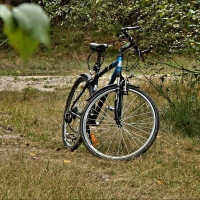 В Омской области велосипедист напал на женщину