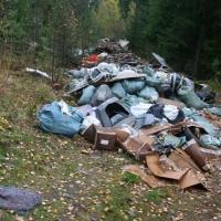В Омской области уже год по решению суда не могут ликвидировать свалку