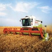 Сельское хозяйство поддержат на 900 миллионов