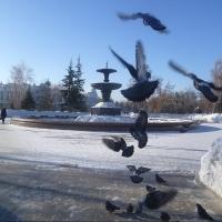 Средняя температура на выходных в Омской области составит -13 градусов днем