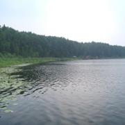 На озере Линёво откроют заказник