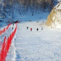 В Крутой Горке планируют построить лыжероллерную трассу