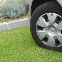 За парковку на газонах оштрафовали более 1,5 тысяч омичей