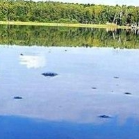 В Казахстане утонул 6-летний житель Омска