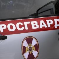 Омская студентка получила срок за удары ногами росгвардейцев