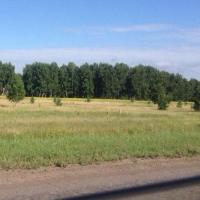 У Омска появился земельный участок в 36 тысяч квадратных метров