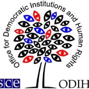 В Омский регион прибыли 23 международных наблюдателя