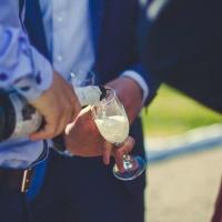 Бывший вице-мэр Омска предложил продавать молдавское вино