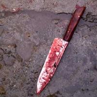 В Омской области больной старик  ударил ножом своего сына и его друга в сердце и лёг спать