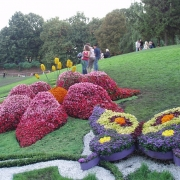 Советский округ пригласит на цветочный салют