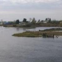 Медведев выделил Омской области 600 миллионов на устранение последствий паводка