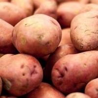 В Омской области мальчик пошел в погреб за картошкой и умер от удара током