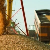 Первый «зерновой экспресс» в 66 вагонов отправила Омская область