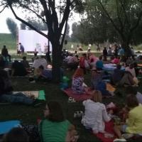 На Старозагородной роще для омичей будут устраивать летние кинопоказы
