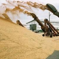 В Год плодородия Омская область потратит на удобрения 100 млн рублей