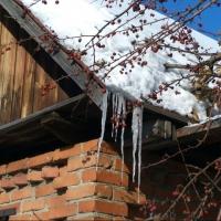 Календарная зима закончится в Омской области без морозов
