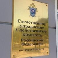В Омске 2 преступные группы похитили у детей-сирот 4,5 миллиона рублей