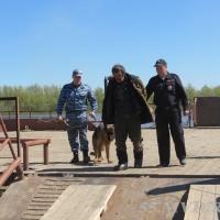 В Омской области мужчина избил до смерти свою подругу и сбежал в тайгу