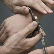 Полиция задержала маньяка-насильника,  нападавшего на женщин в роще у МСЧ № 9