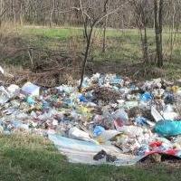 В омском парке имени 30-летия Победы зафиксировано восемь стихийных свалок