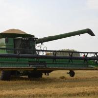 В ближайшие сутки омские аграрии преодолеют рубеж в 2 миллиона тонн зерна