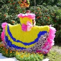 Для омичей на «Флоре» подготовили цветочные фотозоны