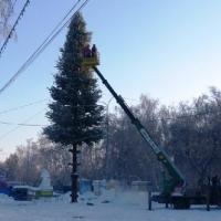 В Омске установят 18-метровую главную елку