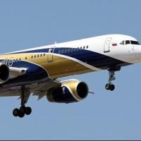 Омичи не смогли улететь в Турцию из-за попавшей в двигатель самолета птицы