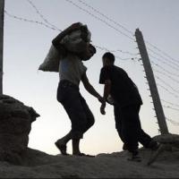 Омские таможенники покажут дорогостоящий конфискат на выставке