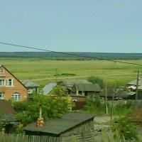В Омской области обследовали 12% всех сельскохозяйственных объектов