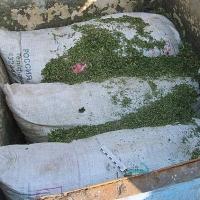 Сельчанин помог наркополицейским изъять 19 килограммов наркотиков