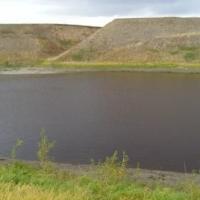 В Омской области утонула 33-летняя женщина