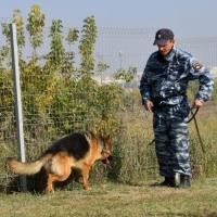 Омские пограничники 20 лет несут службу на российско-казахстанском участке